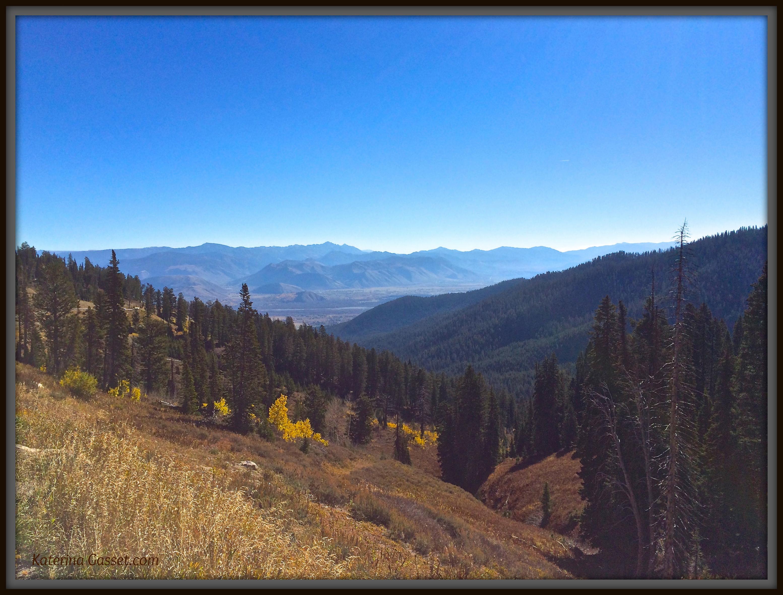 Jackson Hole Wyoming Vista by Katerina Gasset