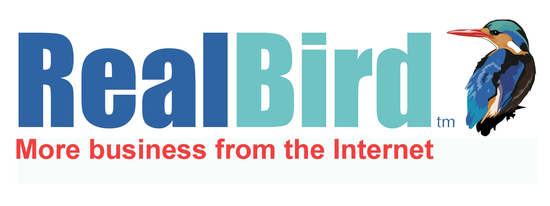 RealBird Webinar Katerina Gasset speaking